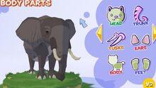 Bush elephant