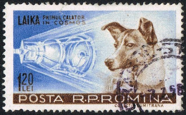 File:Laika Briefmarke.jpg