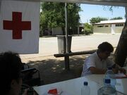 Cruz roja 15dz13
