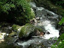 林美溪 Linmei River - panoramio