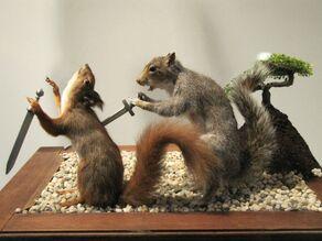 Squirls