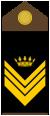 Yugoslav Royal Army SgtMajsecond-insignia.png