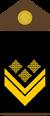 Yugoslav Royal Army MasterSgtsecond-insignia