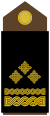 Yugoslav Royal Army Colonel-insignia
