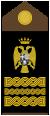 Yugoslav Army Field Marshal-ins