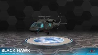 World War Online - Black Hawk (Normal Airforce Unit)