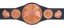 WWE Tag Team Championship 2010.jpeg
