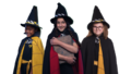 The worst witch S02 onward journey.png