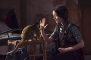 12615431-low res-the-worst-witch