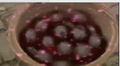 Jellyballs.png