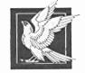 Falcon-icon.png