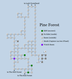 Zone 136 - Pine Forest