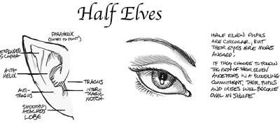 File:Half elves.jpg