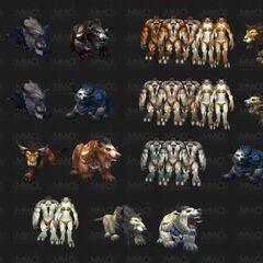 Wpływ koloru skóry taurenów na kształt druidycznej niedźwiedziej i kociej formy