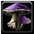 Inv mushroom 06