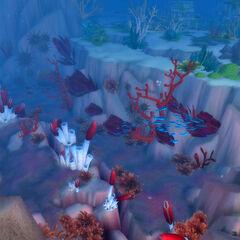 Wypełniony morskim życiem Wąwóz Migoczącej Głębi
