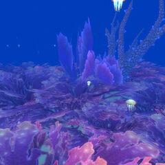 Koralowiec w Abisalnych Głębinach