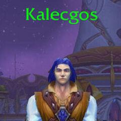 Калесгос в форме эльфа-полукровки.