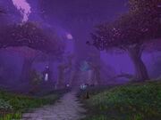 Twilight Grove