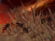 Fin des dragons