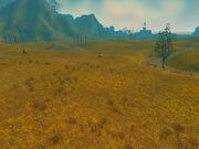 The Dust Plains