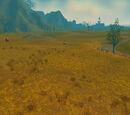 Dust Plains