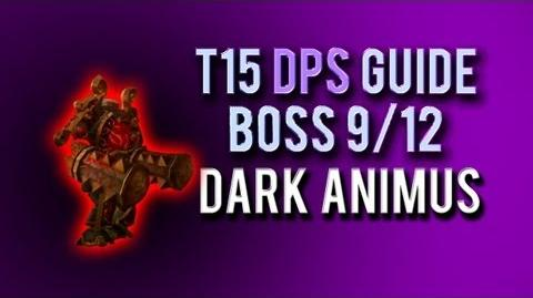 """Dark Animus"" DPS Guide → Boss 9 12 in Throne of Thunder"