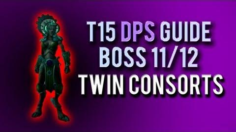 """Twin Consorts"" DPS Guide → Boss 11 12 in Throne of Thunder"