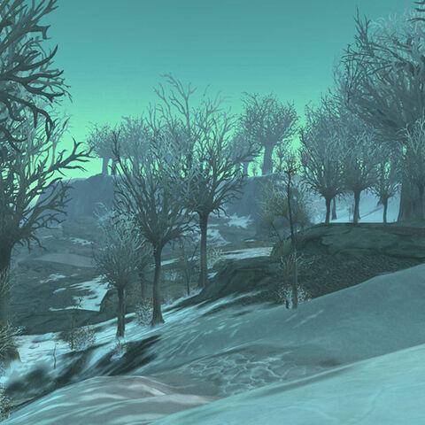 Zamarznięte lasy Smoczego Cmentarzyska
