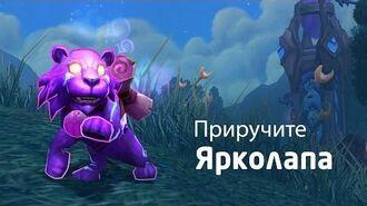 Новый питомец в World of Warcraft — Ярколап