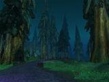 Silverpine Forest