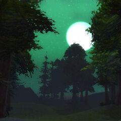 Тирисфальские леса ночью.
