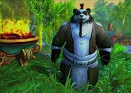 Pandaren early in-game