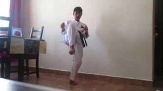 How to learn karate at home !!!!