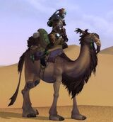 Верблюды (транспорт)
