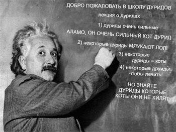 Аламо учитель