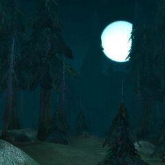 Серебряный бор ночью.