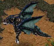 Dragon noir 1