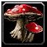 Inv mushroom 07