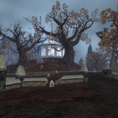 Forgotten Hill<sup>[<a href=