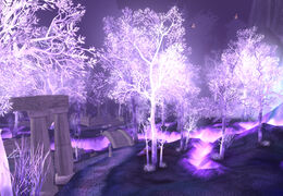 Crystalsong Forest