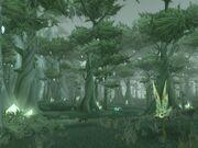 Forêt de Terokkar