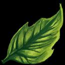 ProfIcons herbalism