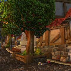 Яблони в Старом Городе