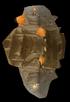 CopperOre