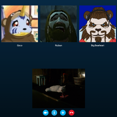 Nizbun in a skype call with his pandafag buttbuddies