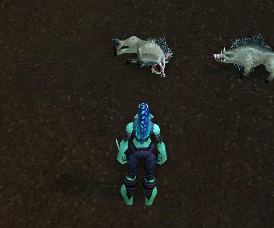 Dead boar 1