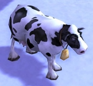 Image of Pygmy Cow