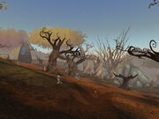 The Scorched Grove