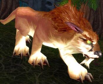 Amani Elder Lynx